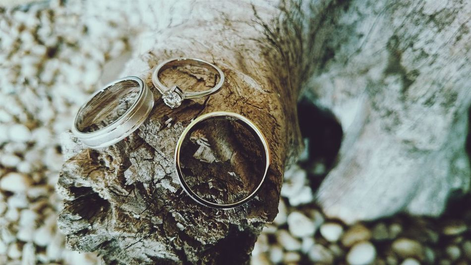 Beautiful stock photos of jewelry, Auto Post Production Filter, Close Up, Driftwood, No People