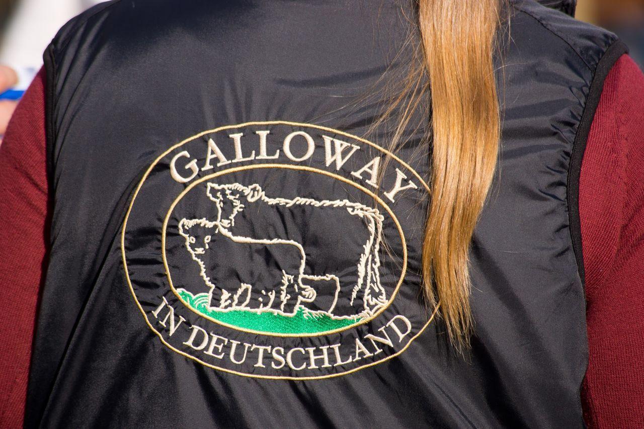 Viehmarkt Rindermarkt Rinder Rind Galloway Cow Hochheimer Markt Hochheim