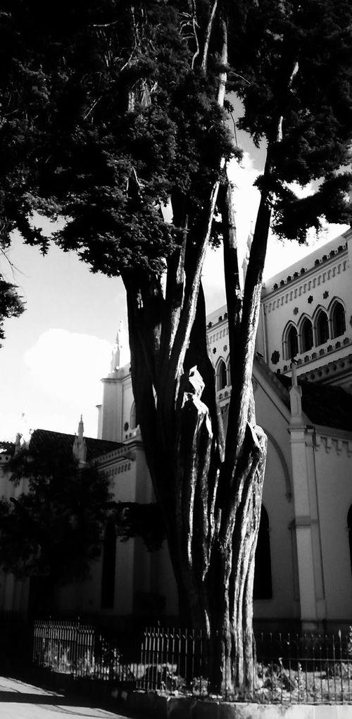 Bogotá Blackandwhite Streetphotography Monochrome