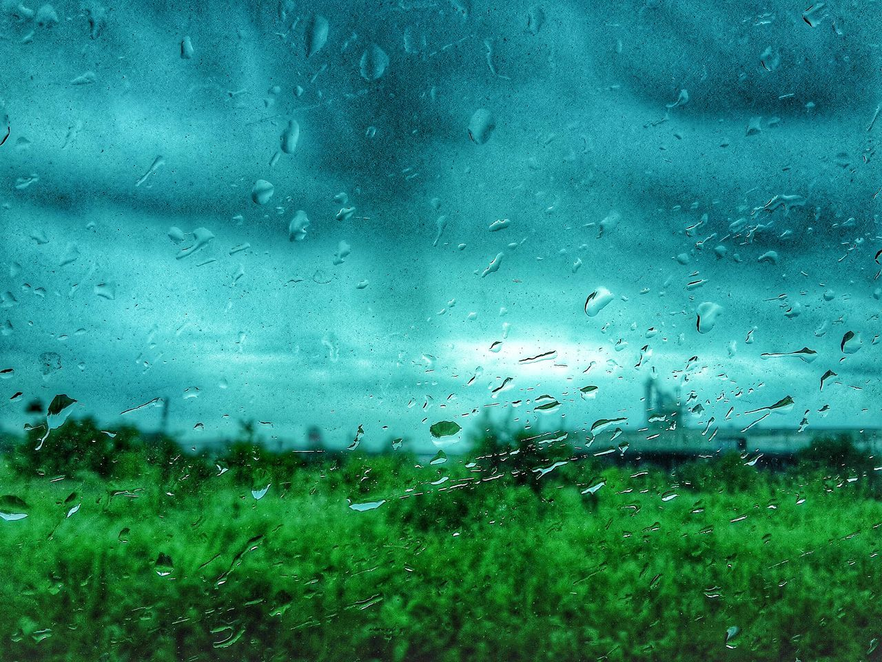rain, drop, raindrop, wet, transparent, weather, rainy season, glass - material, window, water, water drop, droplet, no people, grass, focus on foreground, nature, day, indoors, sky, close-up, backgrounds, storm cloud, landscape, freshness