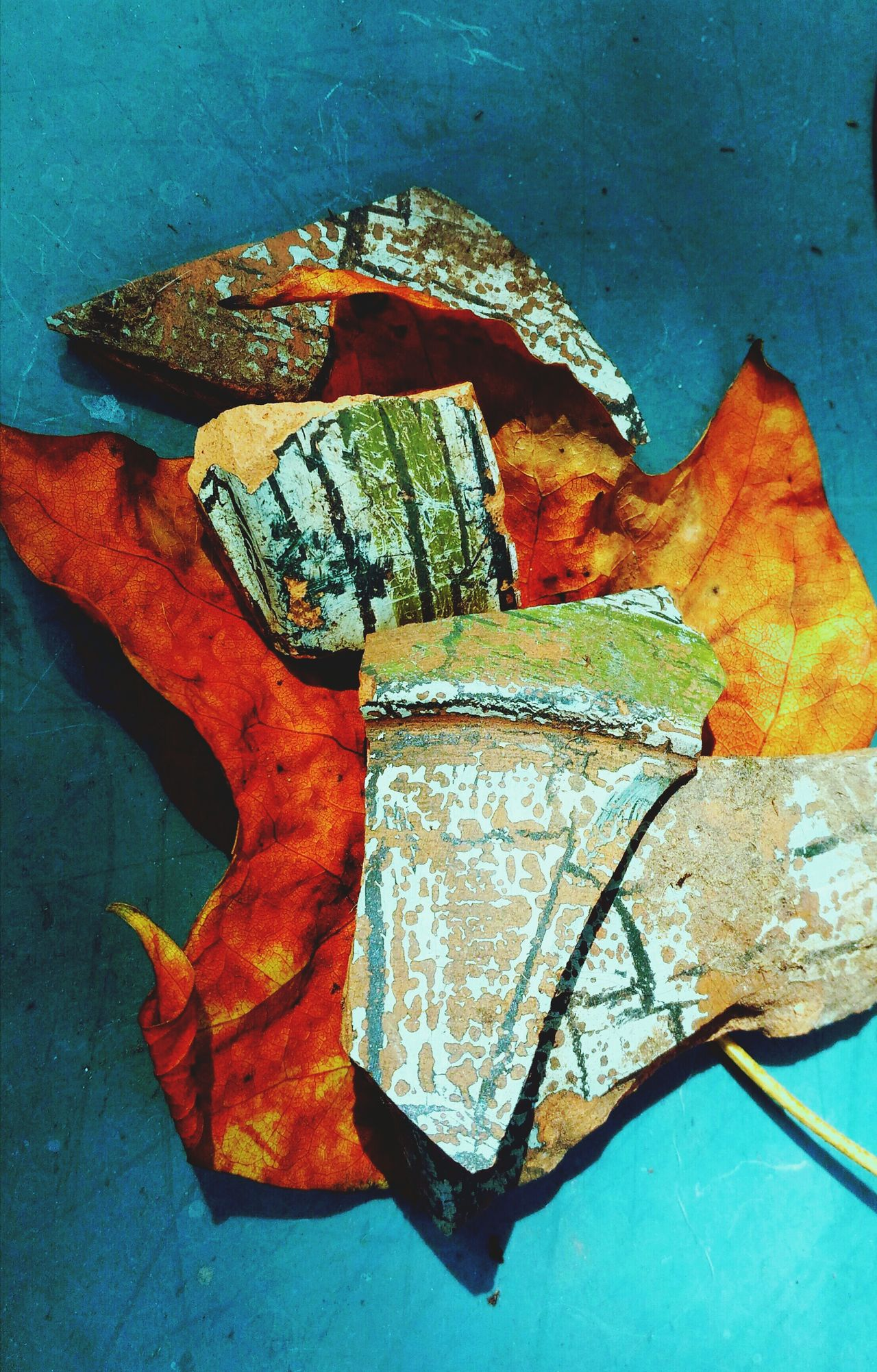 Broken pottery shards snd autumn leaf. Close-up StillLifePhotography Colors Of Nature Colors Of Autumn Green Color Orange Color Pottery Pieces Broken Pots Autumnbeauty Leaf Autumn Autumn Leaves Autumn Collection Autumn Colors Fall Colors Broken Pottery Pottery Shard Focus On Foreground Nature Beauty In Nature Still Art Leafphotography Artistic Photography Artistic Photo Artistic Expression