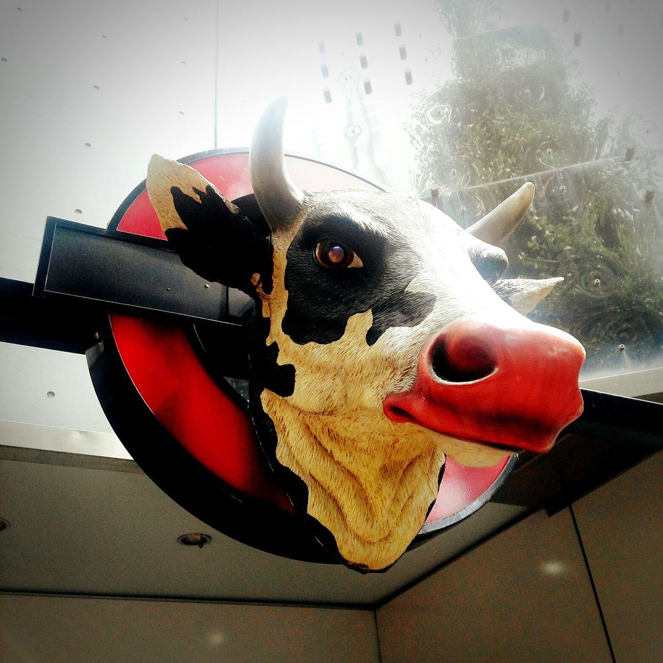 08202016 牛 ローストビーフ丼 レッドロック 原宿 表参道 Cow 話題 Summer Lunch Time!