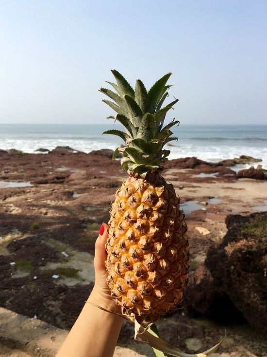 Beach Beach Life Close-up Food Fruit Goa Healthy Eating Healthy Lifestyle Holding Horizon Over Water Human Body Part Human Hand India Nature Pineapple Sea Vegetarian Food Food Stories