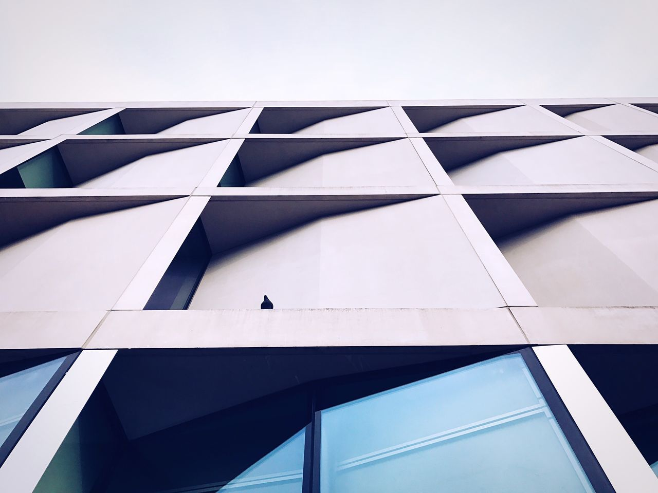 Low Angle View Architecture Built Structure Day Modern Real People Outdoors Building Exterior From My Point Of View Iphoneonly IPhoneography EyeEmBestPics EyeEm Best Shots Architecture Architecture_collection Window Windows Geometric Shape Lines Lines And Shapes Geometric Shapes Geometric Architecture