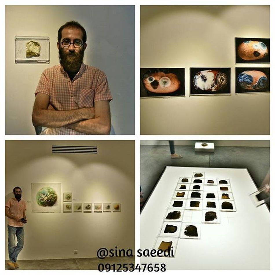 نمایشگاه هامد جابرها.. در گالری شیرین