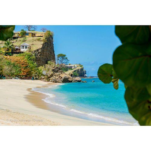 Ig_grenada PureGrenada Livefunner Uncoveryours Westindies_landscape Ig_caribbean Amazingphotohunter Andyjohnsonphotography Theblueislands Ilivewhereyouvacation Pocket_beaches Photo_storee Ig_latinoamerica_ IG_DominicanRepublic Loves_caribbeansea Loves_puertorico Colors_ofourlives World_beautiful_landscapes Igbest_shotz