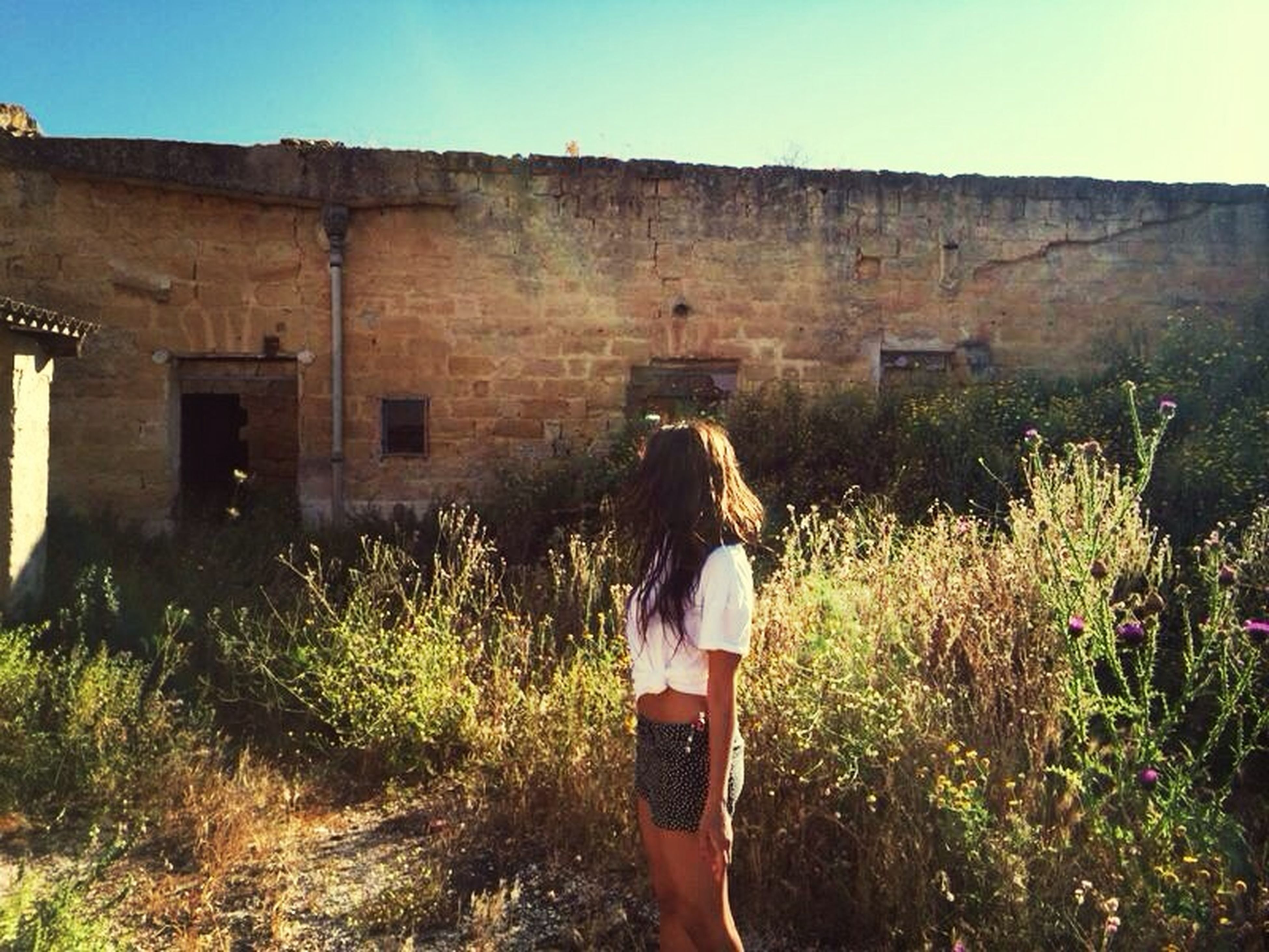 lifestyles, leisure activity, casual clothing, standing, full length, young adult, rear view, young women, plant, built structure, grass, architecture, clear sky, three quarter length, sunlight, building exterior, person