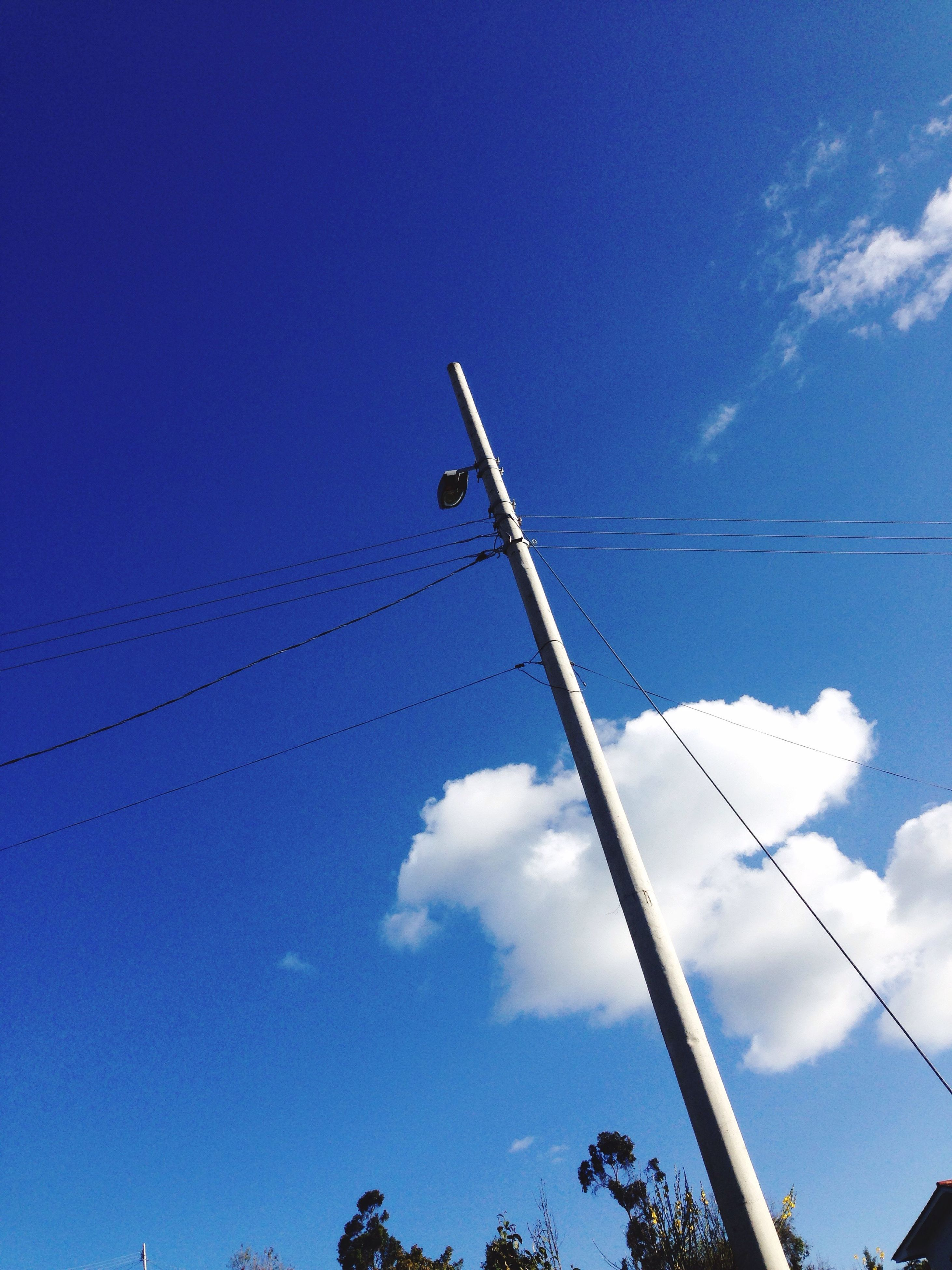 low angle view, blue, sky, day, cloud, tall - high, cloud - sky, tall, outdoors, nature, power line, spire, tranquility, no people, long, scenics, treetop, high section