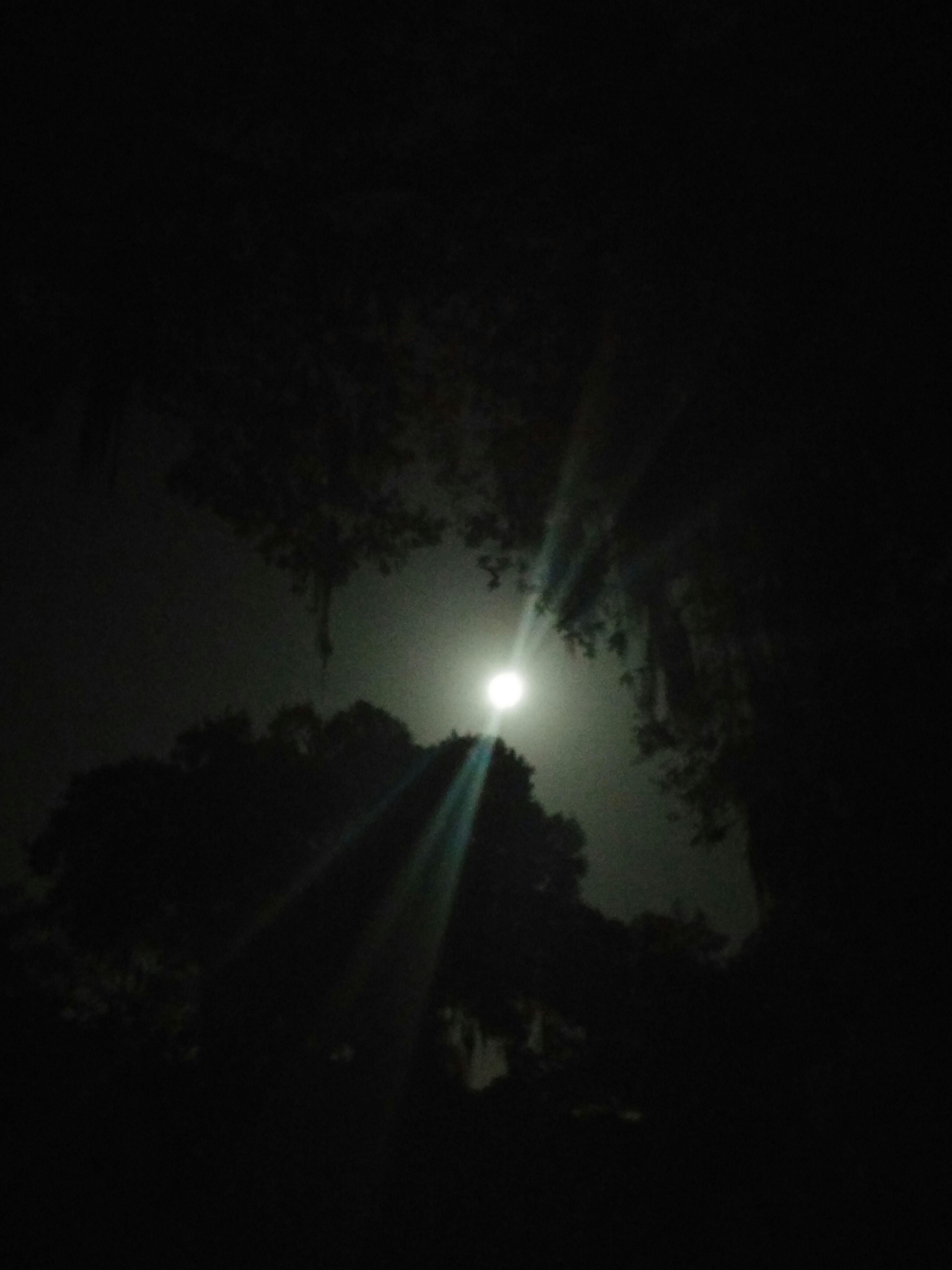 Amazing!! Strawberry Festival Moon