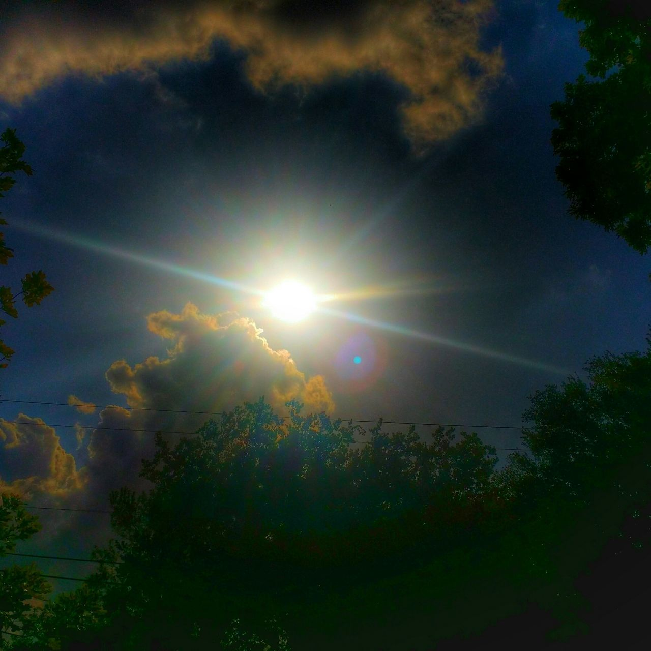 Nibiru Enjoying The Sun Soaking Up The Sun San Antonio TX Eyem Best Shots Totally Worth It Don't Lose Yourself ~