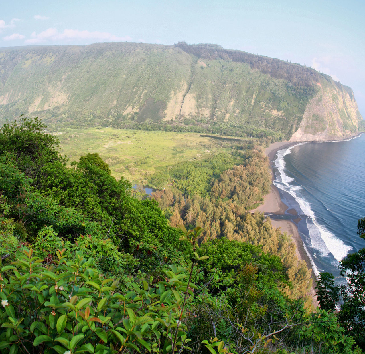 Waipi'o Valley Lookout Big Island Hawaii Agriculture Landscape Nature Rural Scene Green Color Tree Scenics Beauty In Nature Outdoors No People Tranquil Scene Hawaii Life Beauty In Nature Travel Tourism Hawaii USA Panoramic Hawaiian Style Tropical Climate Sea Horizon Over Water Beach