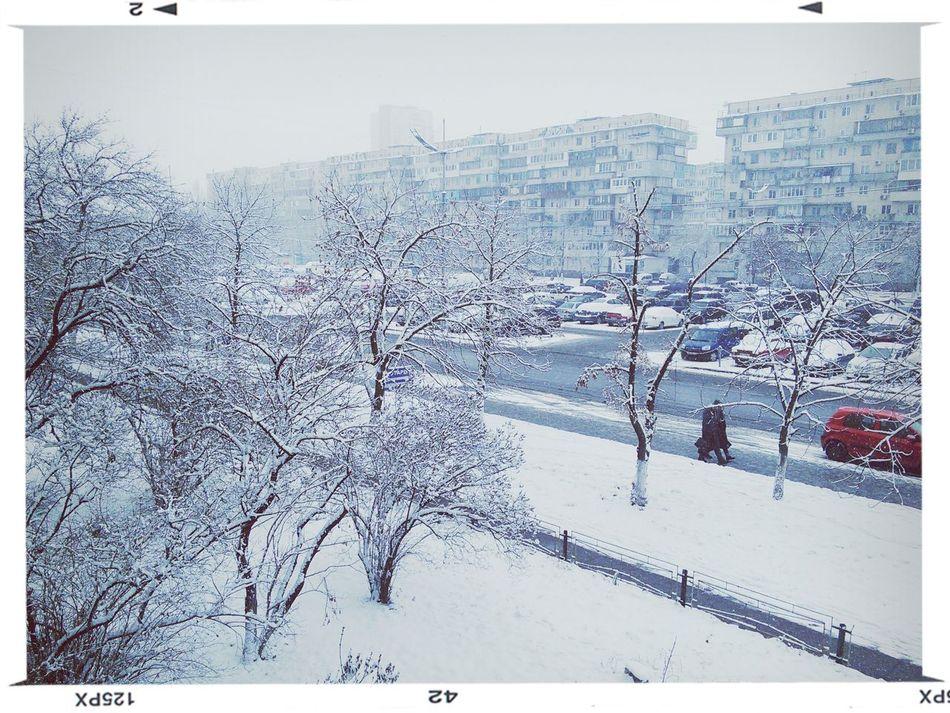 First Snow ♥ Hello World