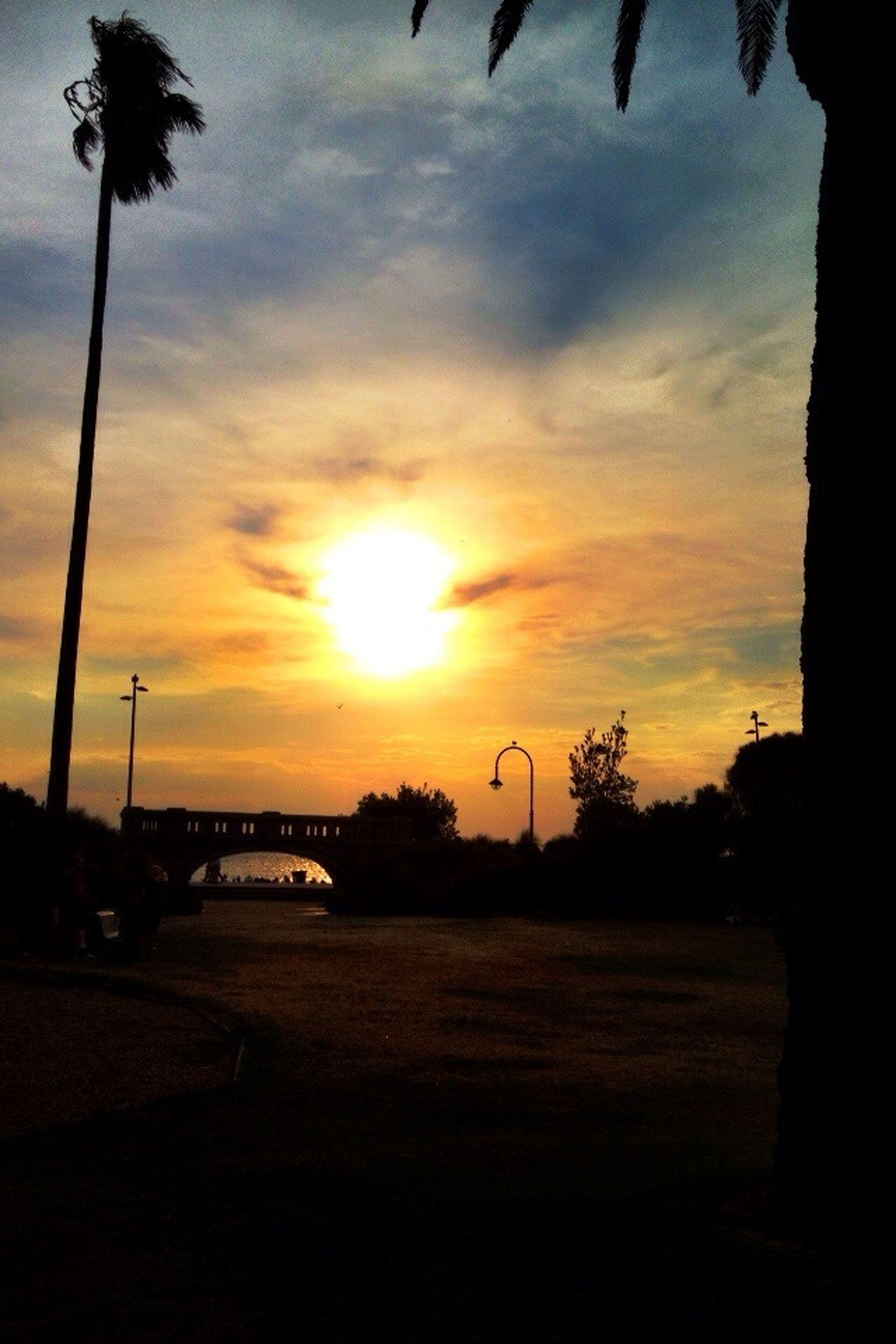 sunset, silhouette, sky, sun, tree, cloud - sky, palm tree, transportation, orange color, scenics, tranquility, cloud, beauty in nature, tranquil scene, car, sunlight, road, nature, land vehicle, idyllic