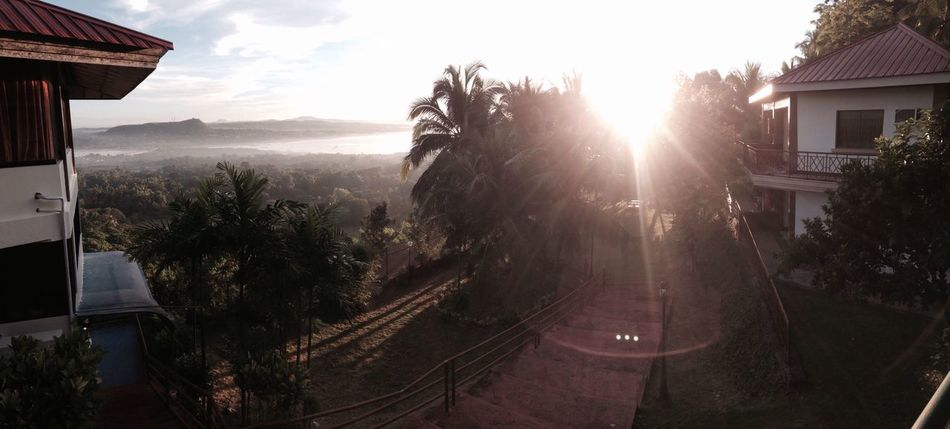 A Bird's Eye View Bohol Cebu Philippines Bacolod Stairs Resort Lens Flare Fog Trees Horizon