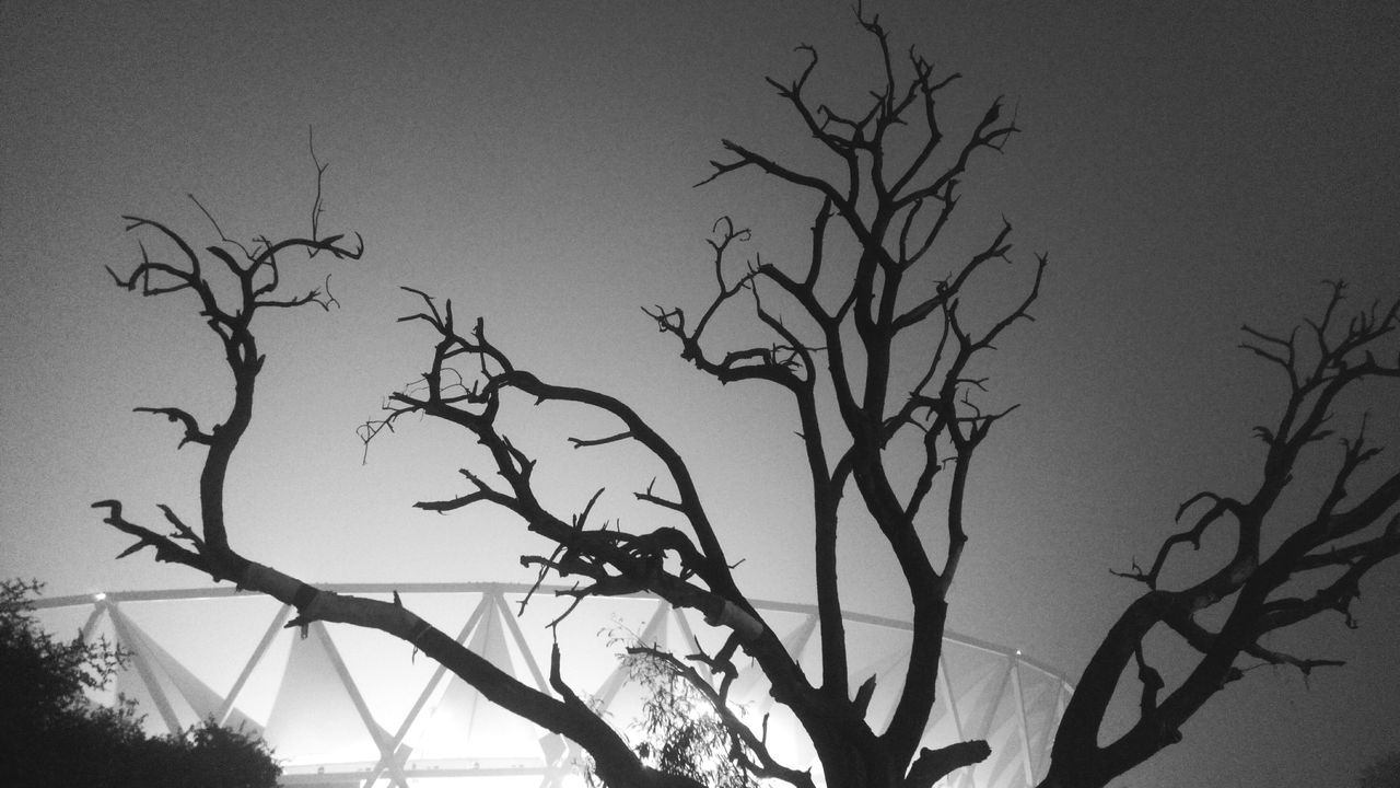Make trees, not stumps!! DelhiSmog HelpDelhiBreathe Photography Taking Pictures Streetphotography From My Polnt Of View EyeEm Gallery PhonePhotography Check This Out What I Value Silhouette Nightsky Trees Treesagainstthenightsky Stumps Trees And Sky Nightphotography Brightlights Stadium Atmosphere Blackandwhite Eye4photography  Eye4India Incredible India EyeEm Best Shots Welcome To Black