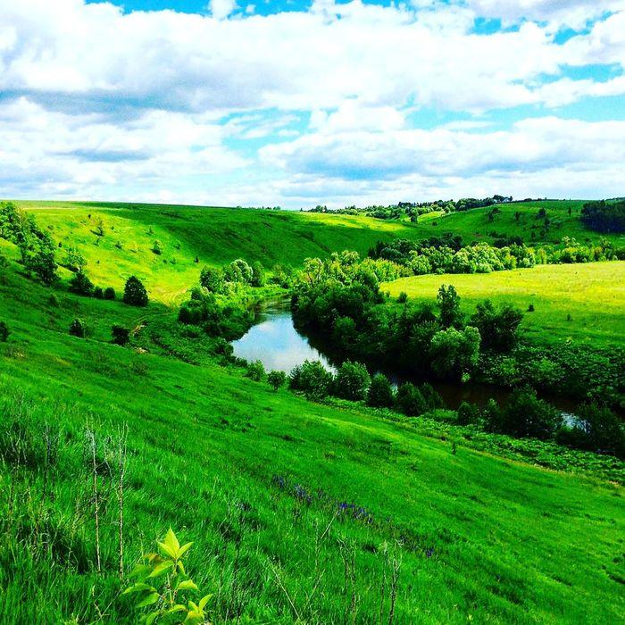 полигон Cloud - Sky Green Color Field Sky Nature Tree Landscape Beauty In Nature Grass