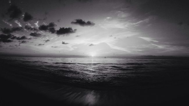 Enjoying The Sun Blackandwhite Black And White Sunrise