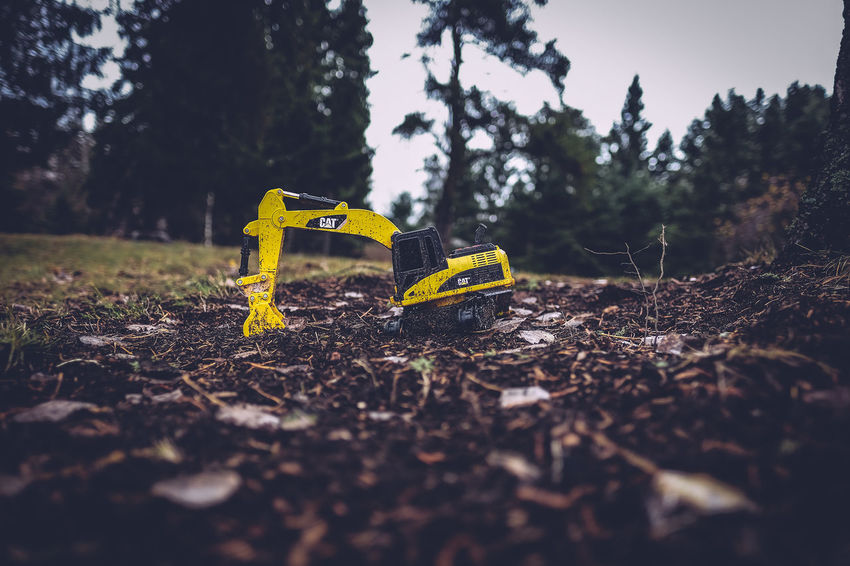 Backyard Bulldozer Closeup EyeEmFiveSenses/sight Forest Ground Low Angle View Low Perspective Trees Yellow