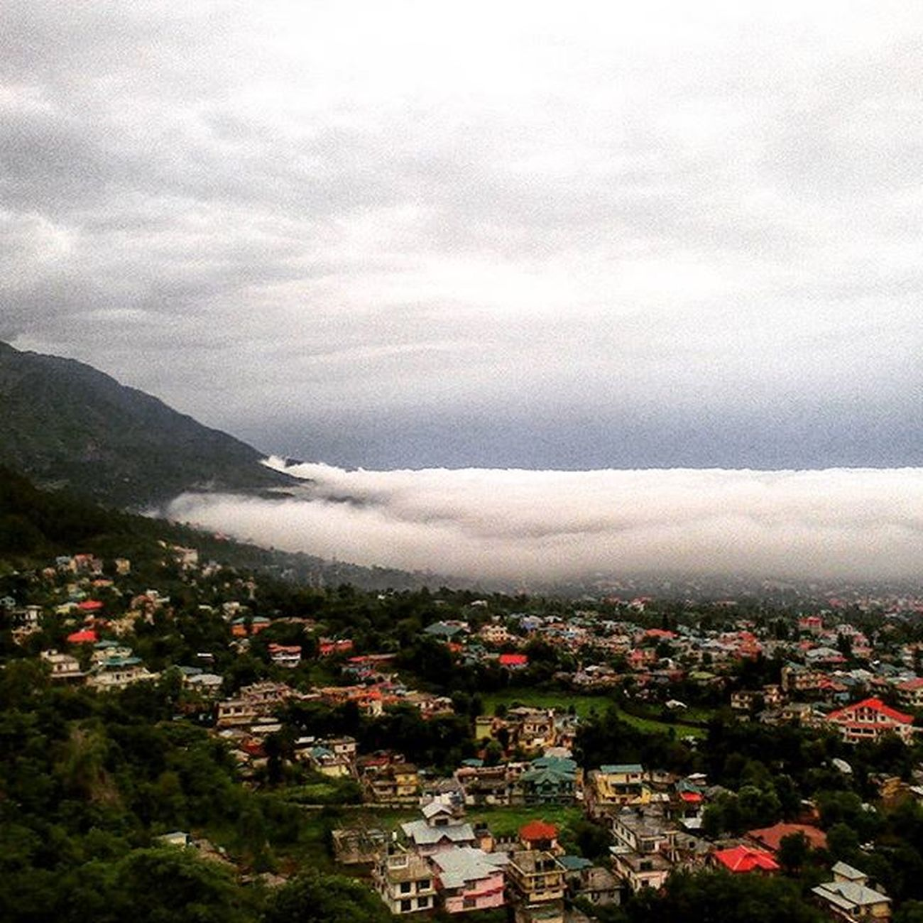 Sea of clouds spreading all over the town ☁☁ Awesome Weather Dharamshala Hometown Clouds Cloudporn Instasky Horizon Himachalpradesh Mothernature Naturegram Hometown Ourplanetisbeautiful Ourindia HEAVENONEARTH PicturePerfect 2015  Himachalpictures Daily_himachal India_ig something New