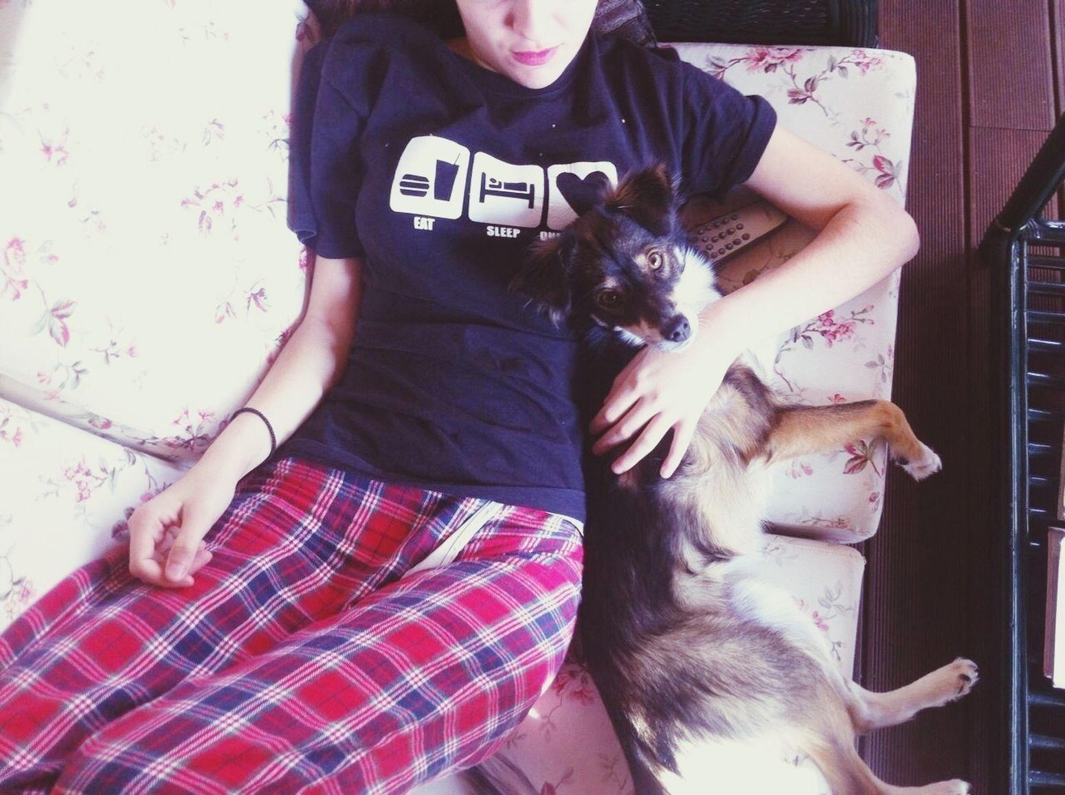 Bestpet  Theloveofmylife Dog She ❤