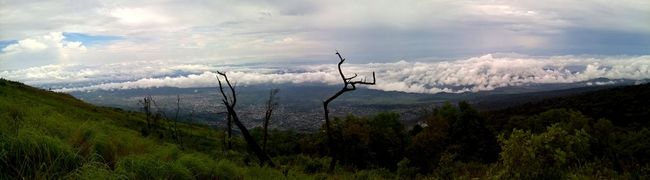 Cameroon Cloud Landscape Landschaft Mount Cameroon Mountain Nature Nature