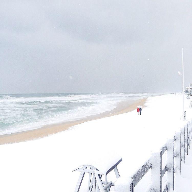 Snow beach. Chance upon them. Snow ❄
