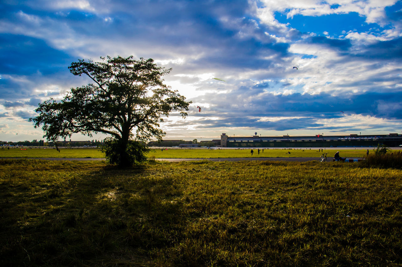 Beauty In Nature Berlin Cloud - Sky Day EyeEm Nature Lover Field Grass Growth Landscape Nature No People Outdoors Scenics Sky Sunset Tempelhofer Feld Tranquil Scene Tranquility Tree Water