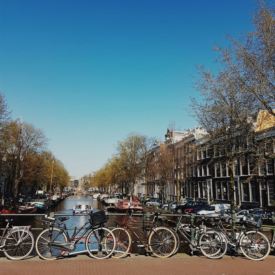 Amsterdam, 27th of March 2017 Sky Transportation Bicycle Mode Of Transport Tree Clear Sky Outdoors No People Day Bike Bikes Canal View Amsterdam Jordaan