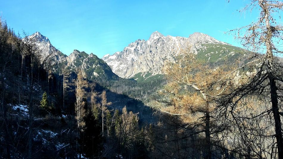 Walking Happynewyear Lomnicky Peak Gemse, Vysoke Tatry, Slovakia