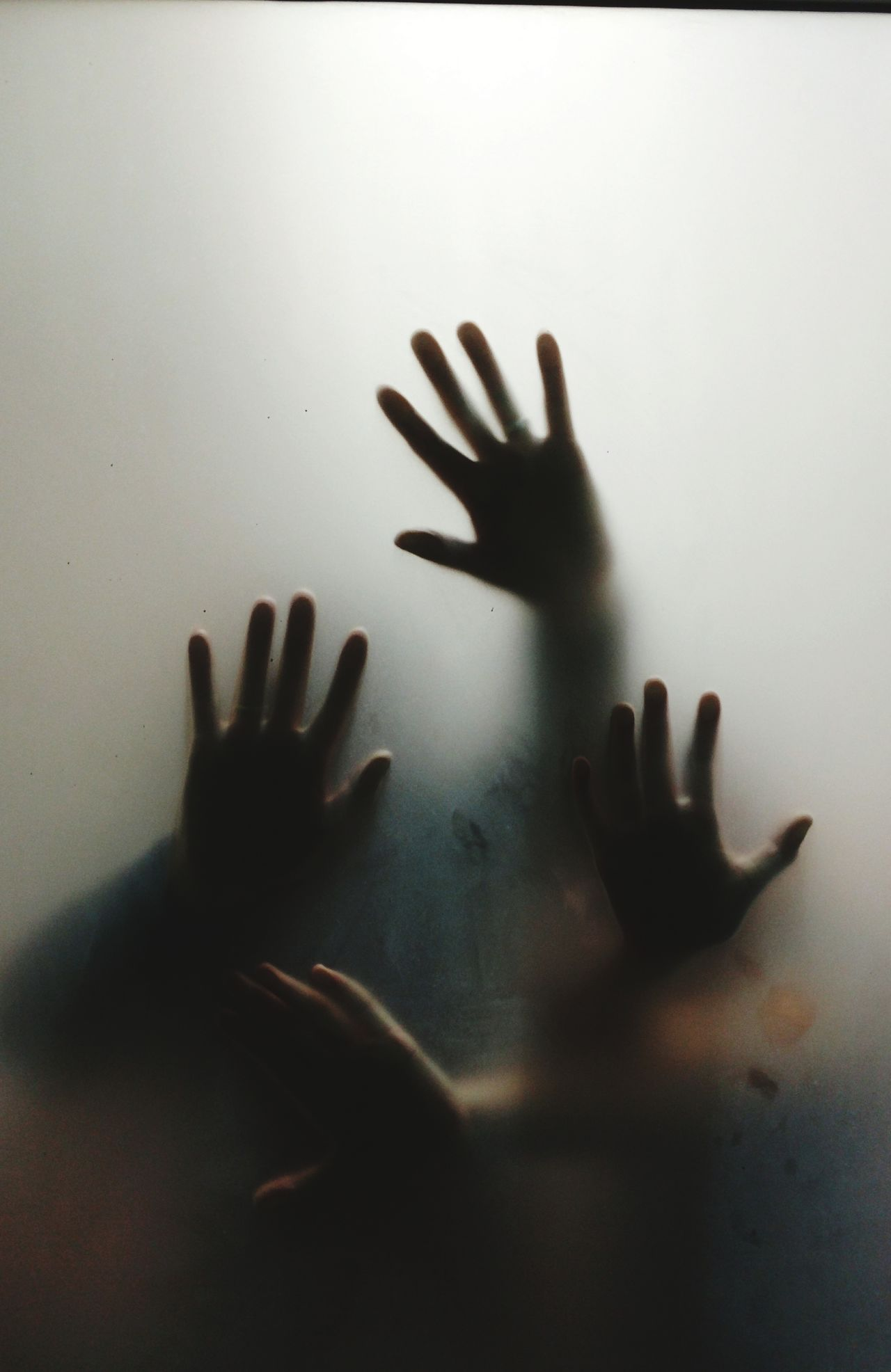 Horror Terrified Human Hand Spooky Horror Fear Silhouette Transparent Human Body Part Back Lit Shadow Frosted Glass Violence Trapped Alien Zombie Window Shock Ghost Handprint Touching
