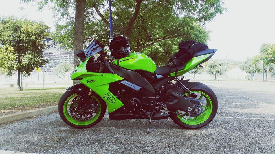 Kawasaki Ninja Zx10r my baby 😈