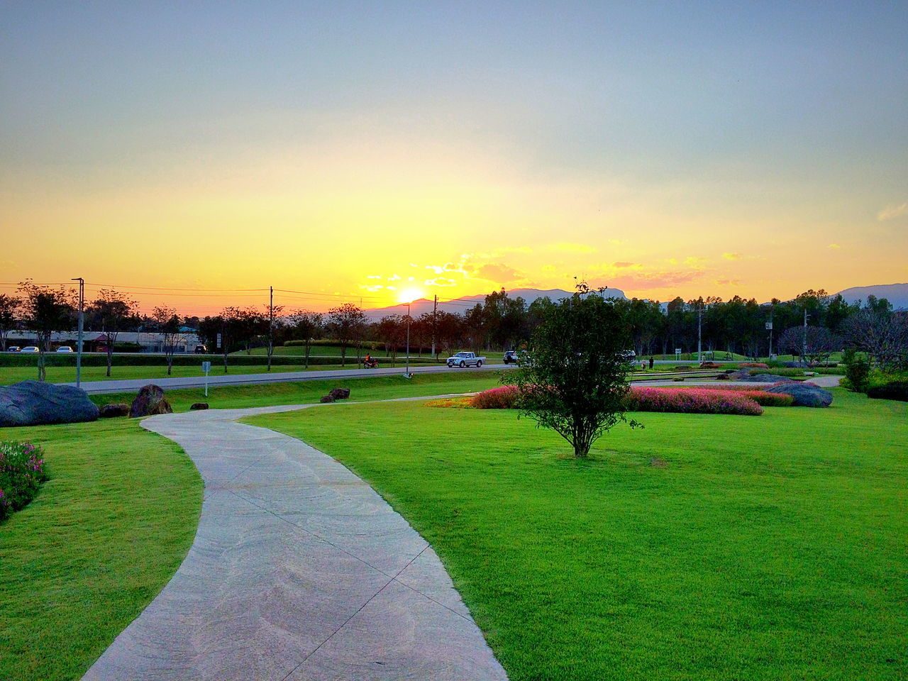 sunset, grass, tree, nature, tranquility, beauty in nature, scenics, sky, outdoors, clear sky, tranquil scene, landscape, growth, no people, golf course, building exterior, day