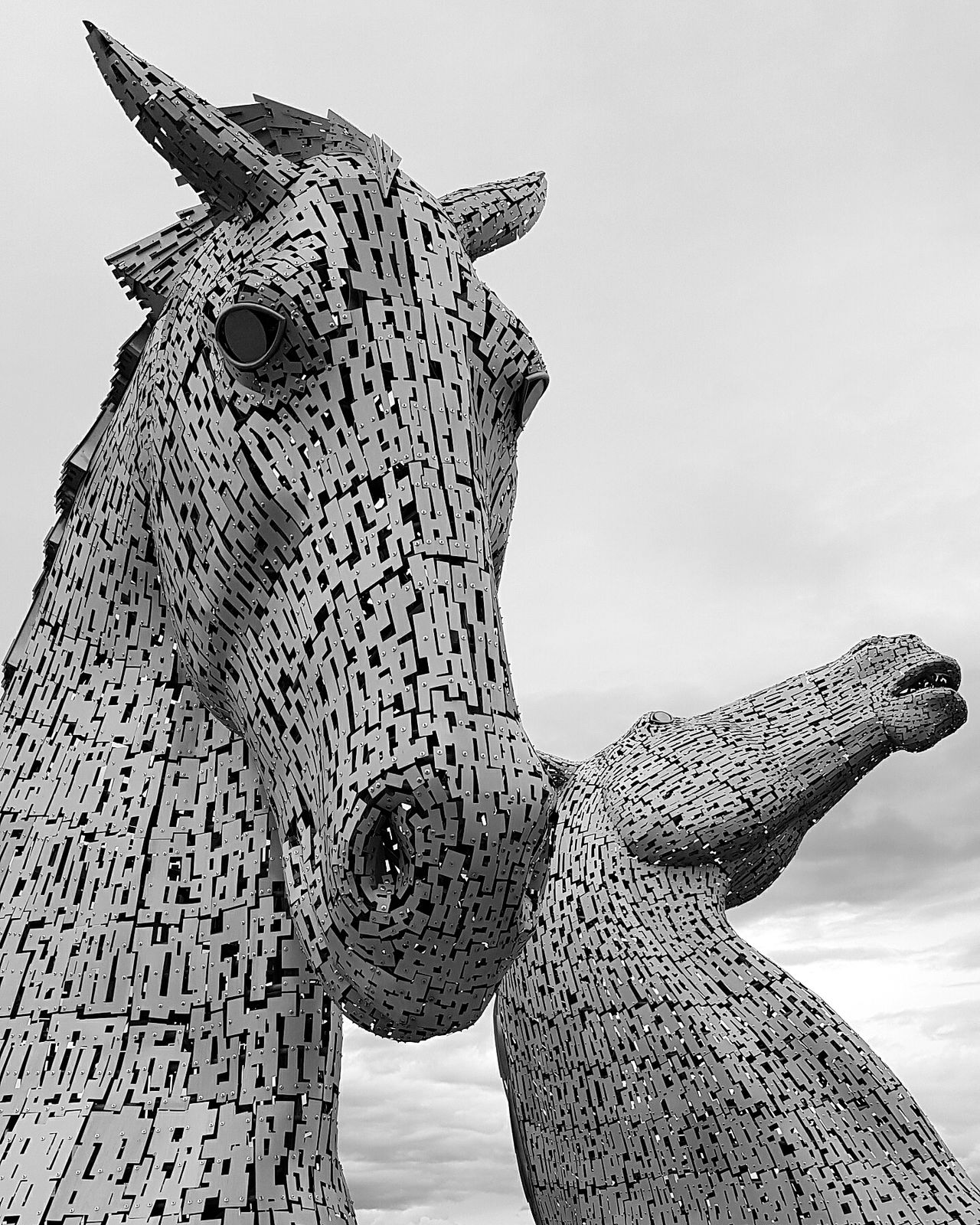 Kelpies Of Falkirk Art Horse