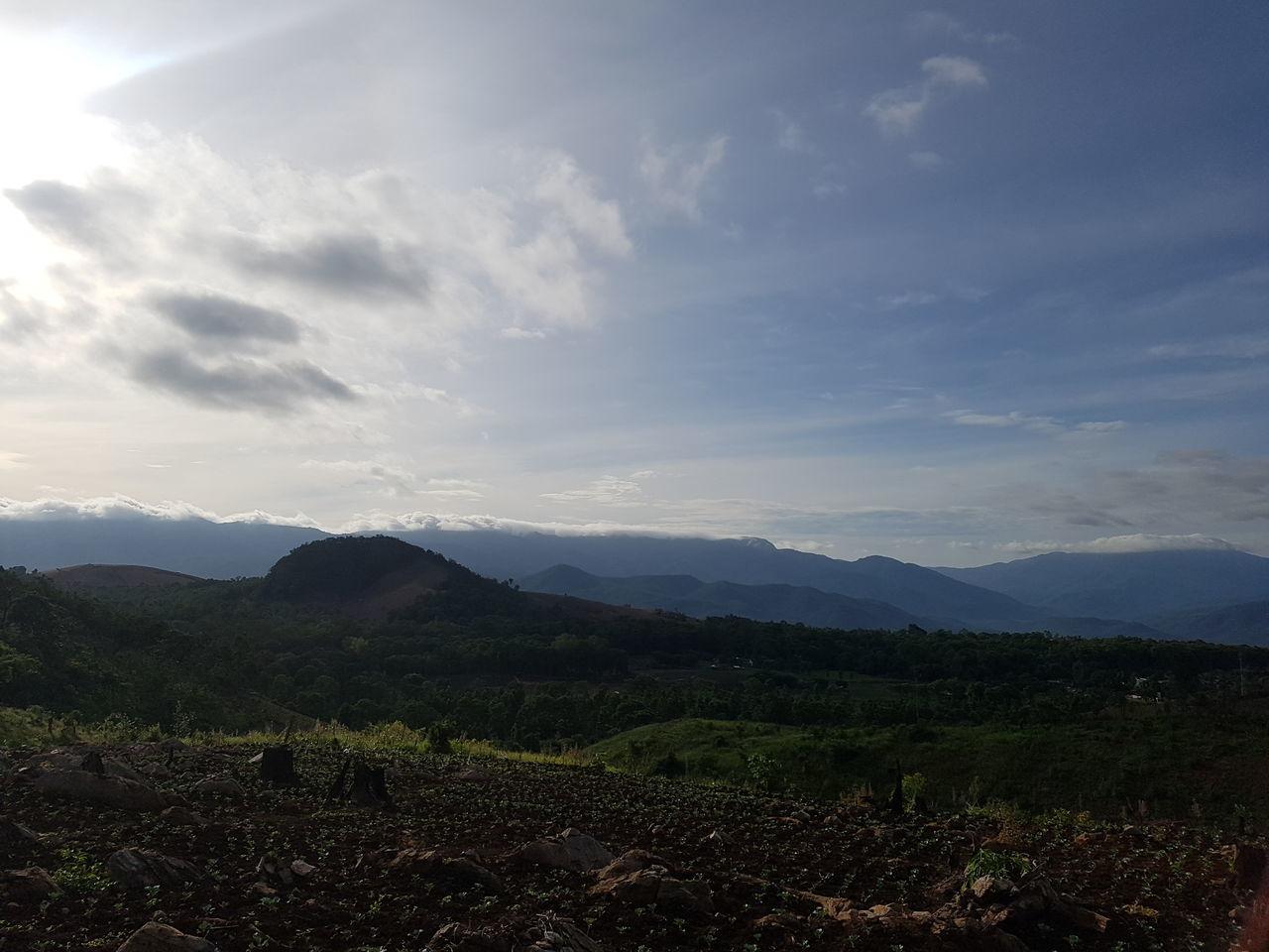วิวสวย วิวภูเขา วิว ธรรมชาติ Mountain Mountain Range Landscape No People Nature Cloud - Sky Outdoors Beauty In Nature Scenics Tree Sky Day Tea Crop Freshness เชียงใหม่