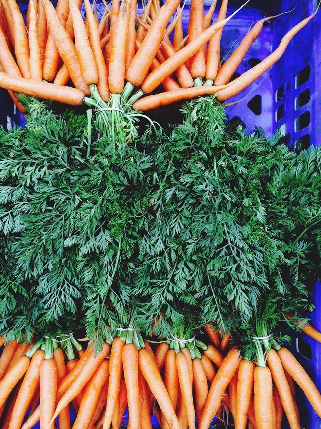 More Carrots Carrottlicious Vegatables