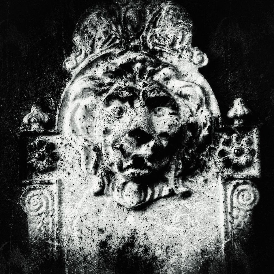 Lion Head Abstract Abstract Photography Lions Urban Exploration Eyeemphotography Outdoor Photography Eyeem Market My Perspective ForTheLoveOfPhotography Fresh On Eyeem  EyeEm Eye4photography  IShootFromMyWheelchair Perspective Fine Art Still Life Outdoors Creative Decaying