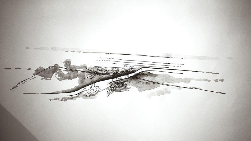 A flow Conception Architecture Lines