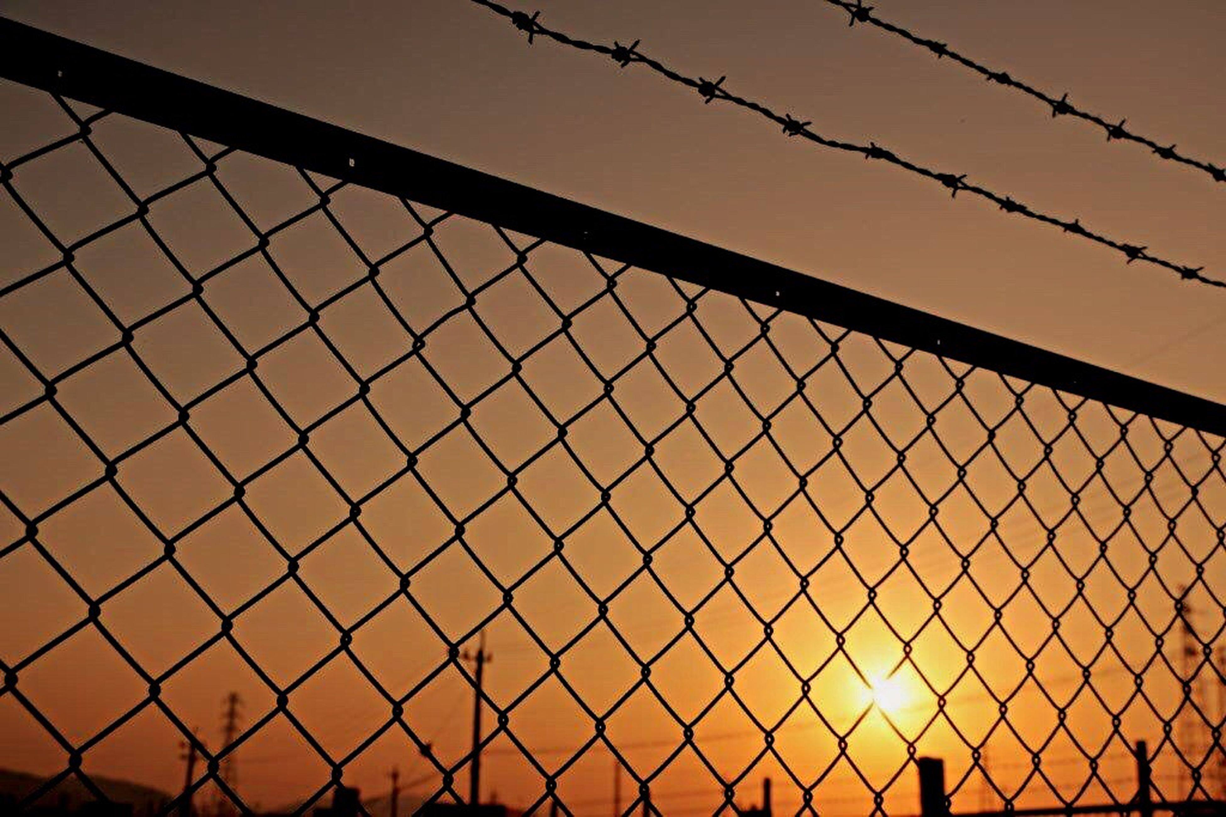 fence, protection, safety, chainlink fence, security, sunset, backgrounds, metal, full frame, bird, pattern, barbed wire, sky, silhouette, outdoors, no people, focus on foreground, orange color, clear sky, metallic