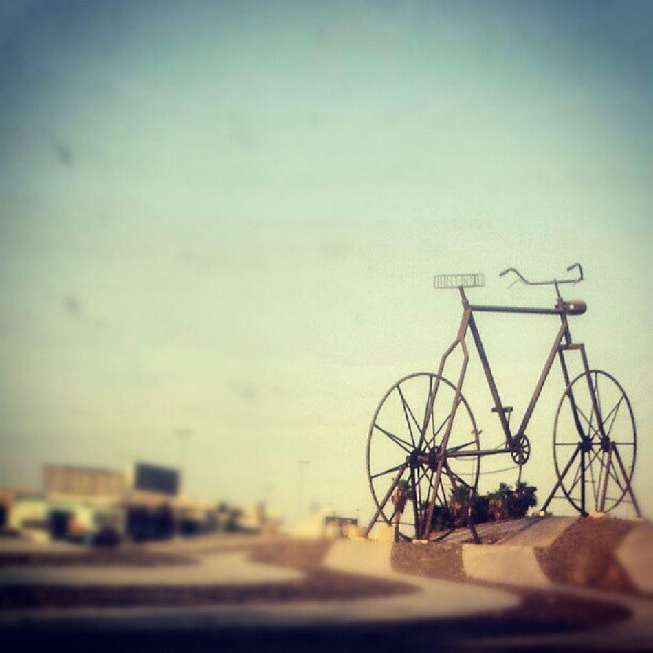 دوار الدراجة دراجة