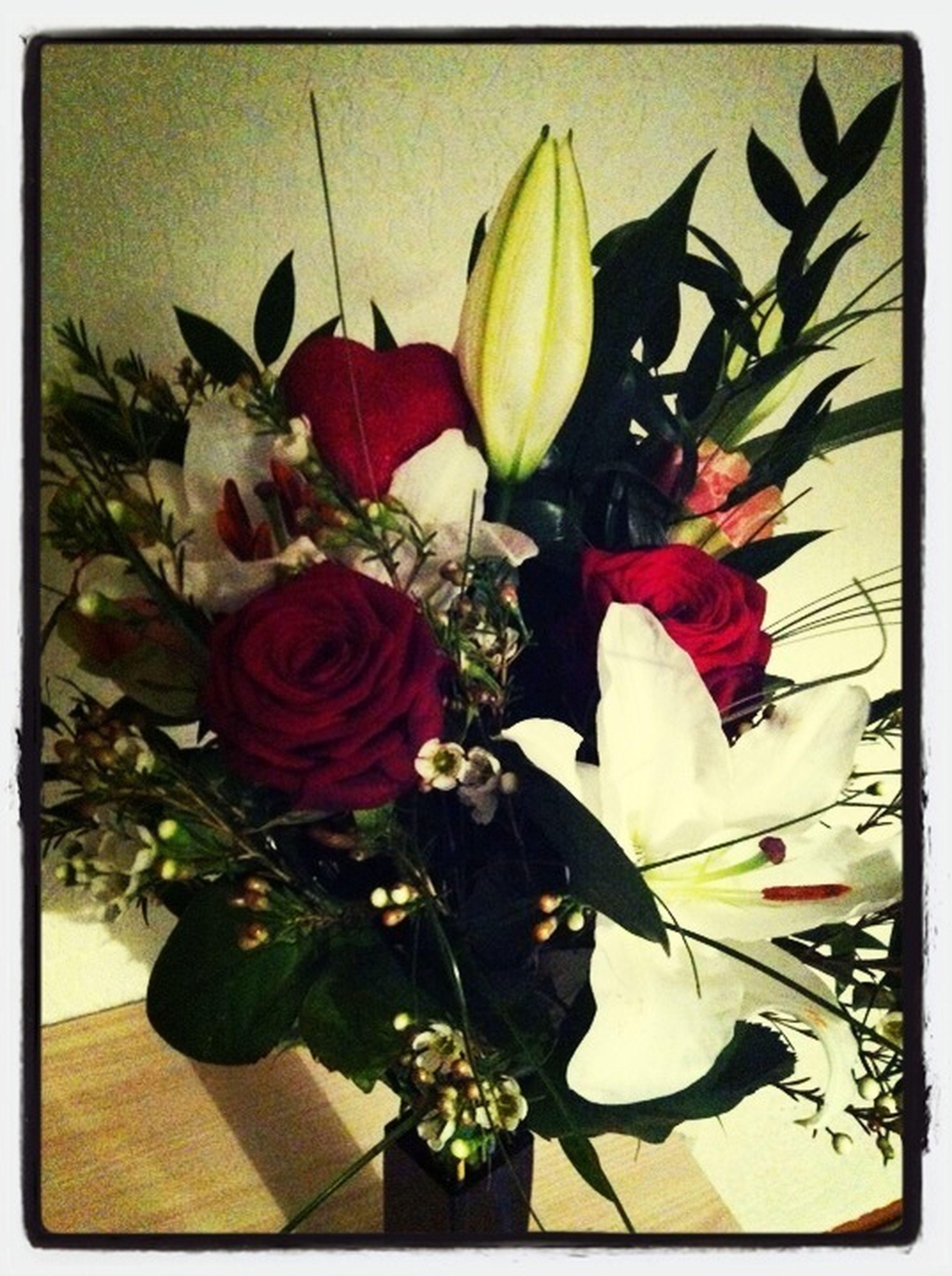 flower, transfer print, petal, freshness, indoors, auto post production filter, fragility, leaf, flower head, plant, growth, potted plant, vase, bouquet, beauty in nature, nature, rose - flower, close-up, flower arrangement, flower pot