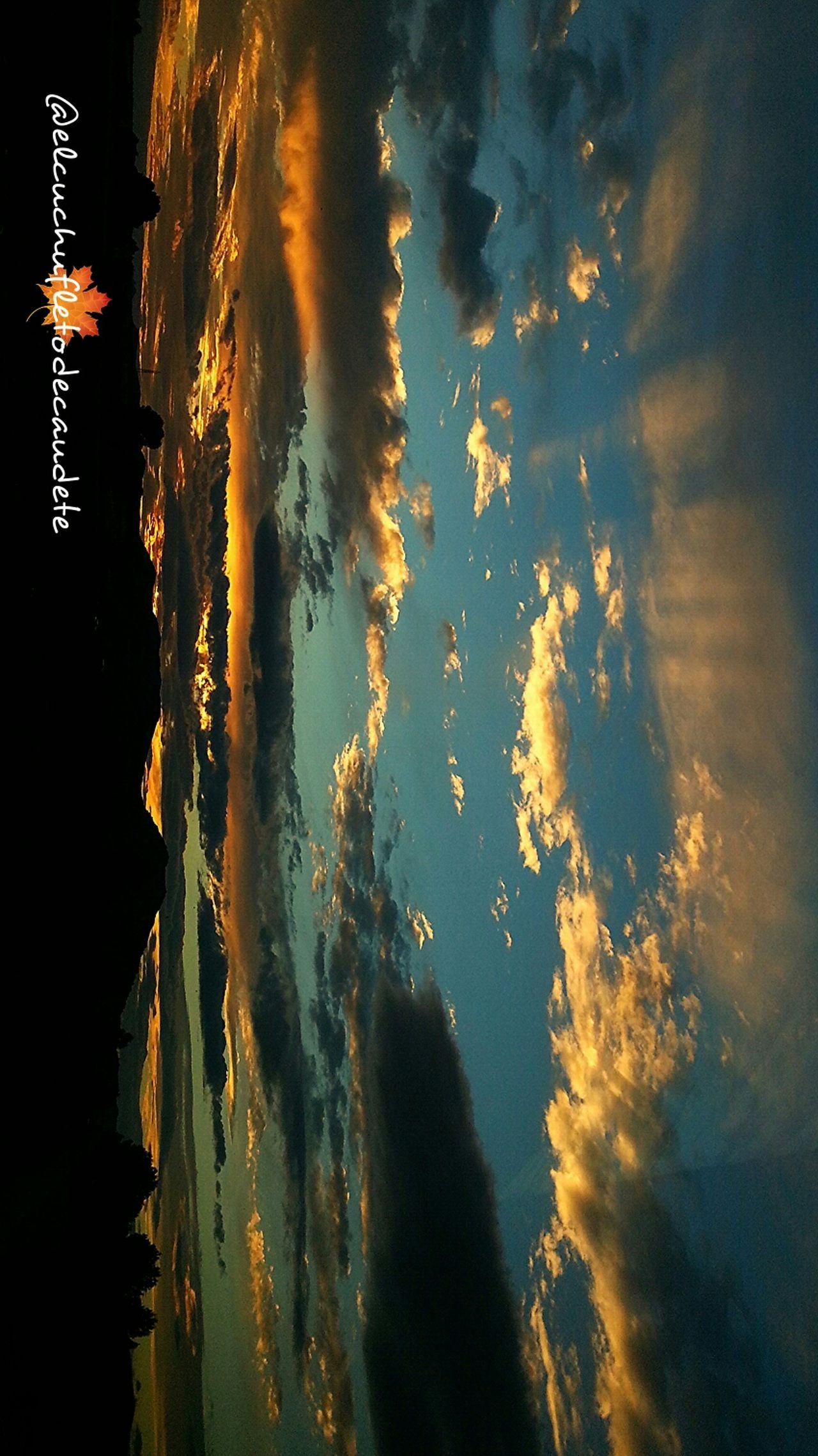 EyeEm Nature Lover Sueño De Una Noche De Verano La Mancha No Edit