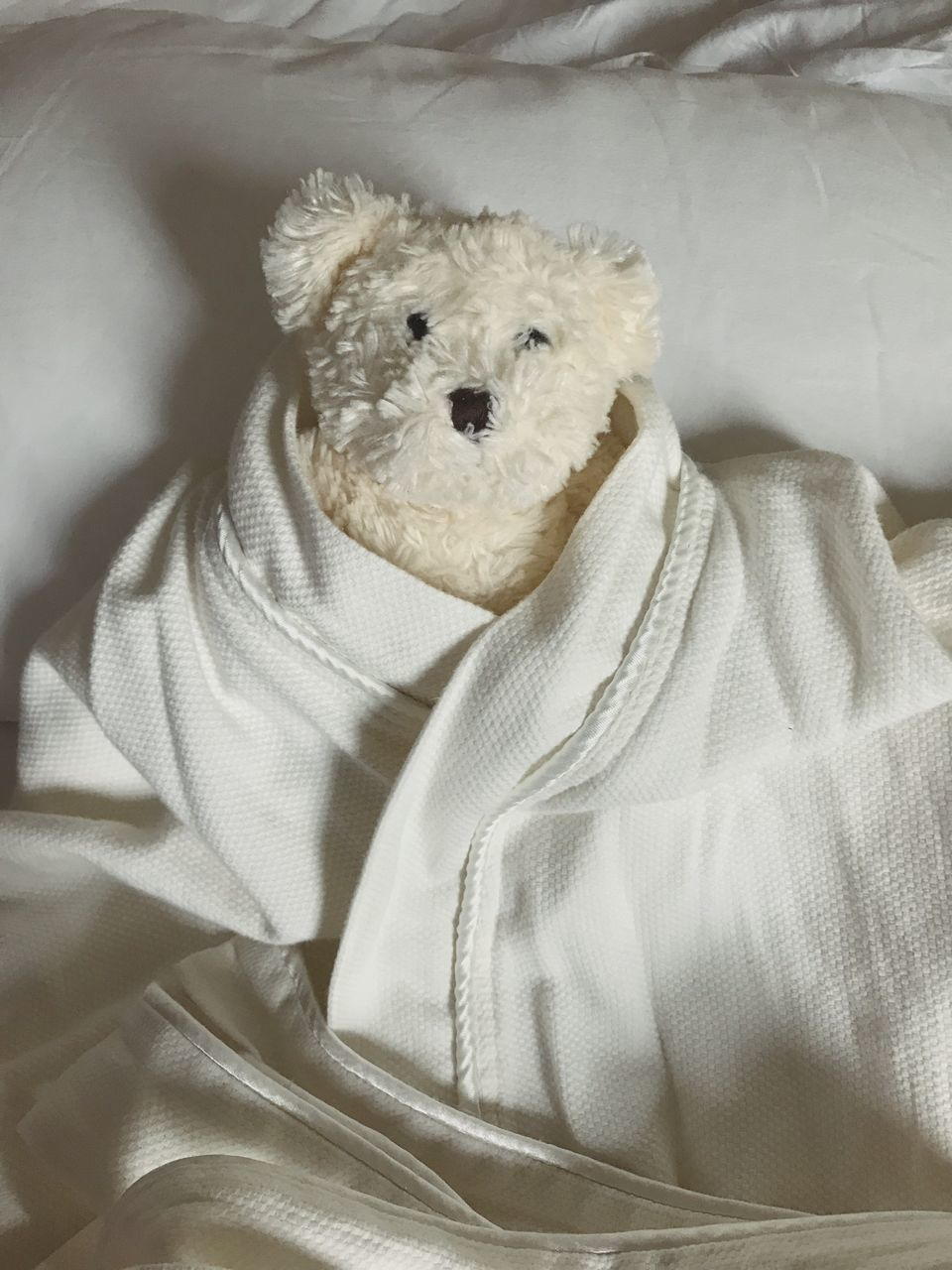 dog, indoors, mammal, one animal, comfortable, bed, pets, cute, lying down, no people, domestic animals, teddy bear, sheet, relaxation, animal themes, stuffed toy, looking at camera, childhood, close-up, portrait, day