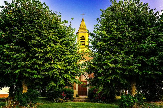 Chapelle. Tree Architecture Building Exterior Built Structure Religion Growth Church Outdoors Green Color Tranquility Tranquil Scene No People Lush Foliage Steeple Nature