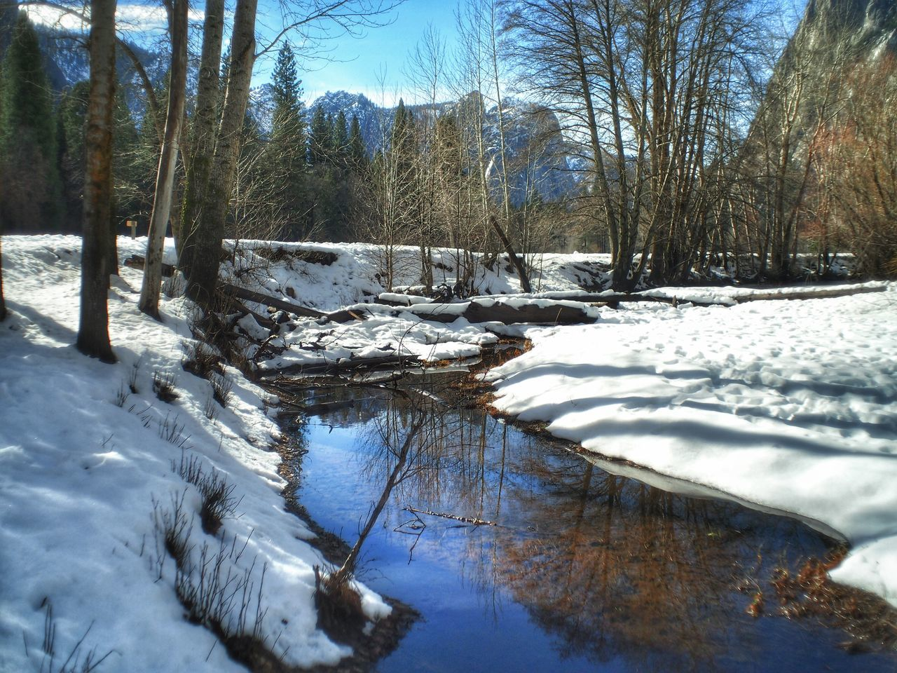 Reflection Of Bare Trees On Stream Amidst Snowcapped Field During Winter