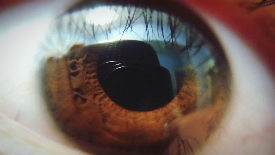 Beautiful stock photos of eyes, Brown Eyes, Close-Up, Dilation, Extreme Close-Up