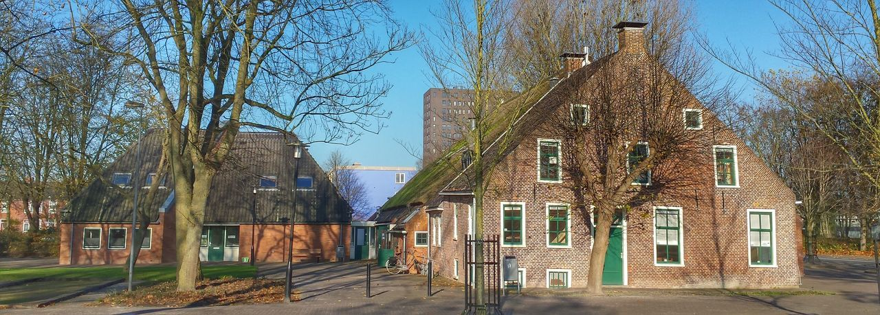 architecture, building exterior, built structure, clear sky, blue, tree, house, sunlight, residential structure, residential building, street, shadow, day, building, the way forward, city, outdoors, window, old, sky
