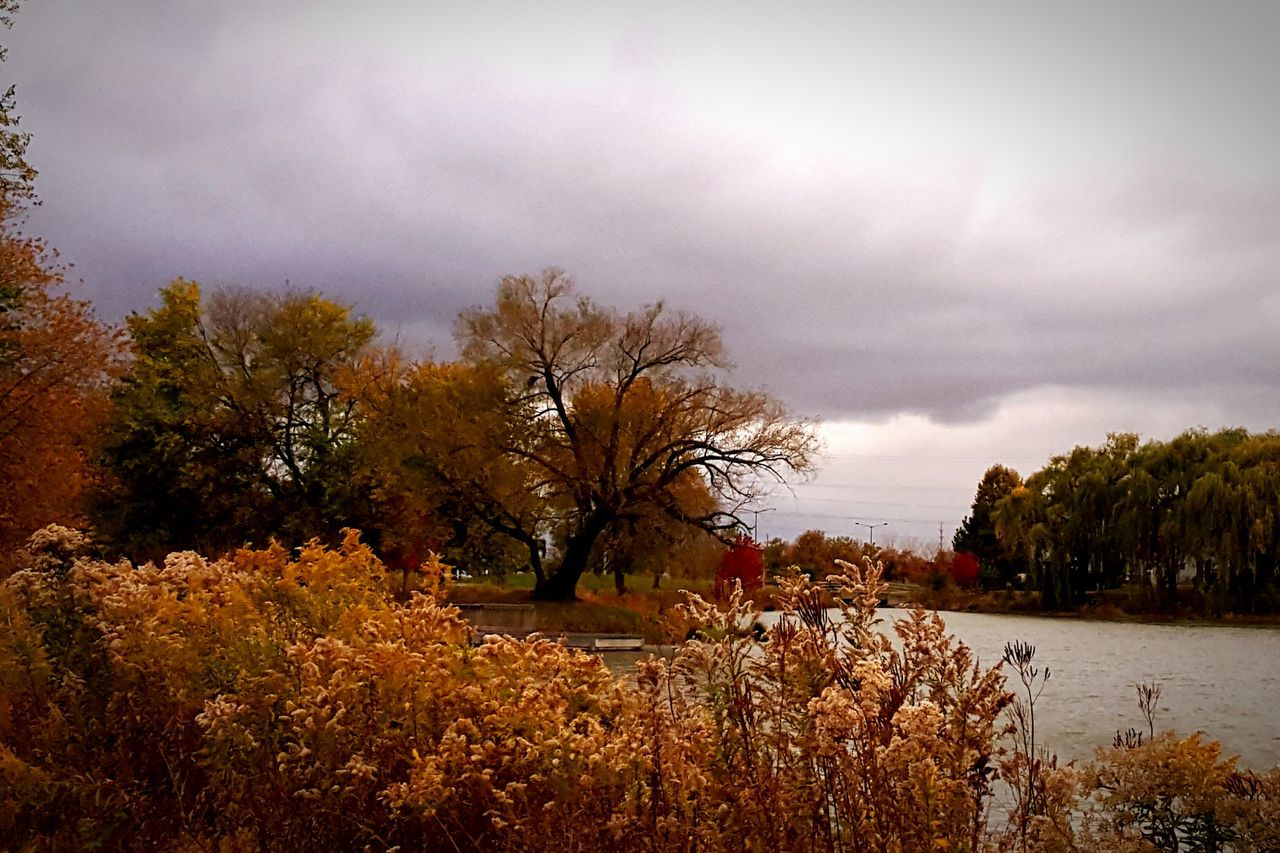 Clouds Cloud_collection Sky Clouds And Sky Fall Colors Fall Beauty Fall_collection Nature Photography Nature_collection Illinois Colors Of Autumn