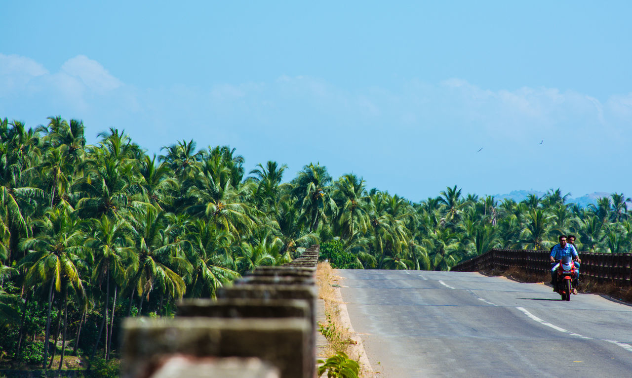 Adventure Adventures Backwaters Bridge Copy Copy Space India Kerala Kerala India Motorbike Palm Palm Trees Palms Roadtrip Showcase: December Landscapes With WhiteWall Photography In Motion