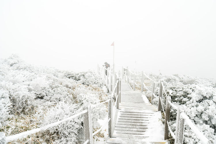 ASIA Halla Mountain Jeju Korea National Park Beauty In Nature Cold Temperature Day Footbridge Jejuisland Landscape Nature No People Outdoors Scenics Sky Snow Steps Straight The Way Forward Volcano Winter Wood - Material