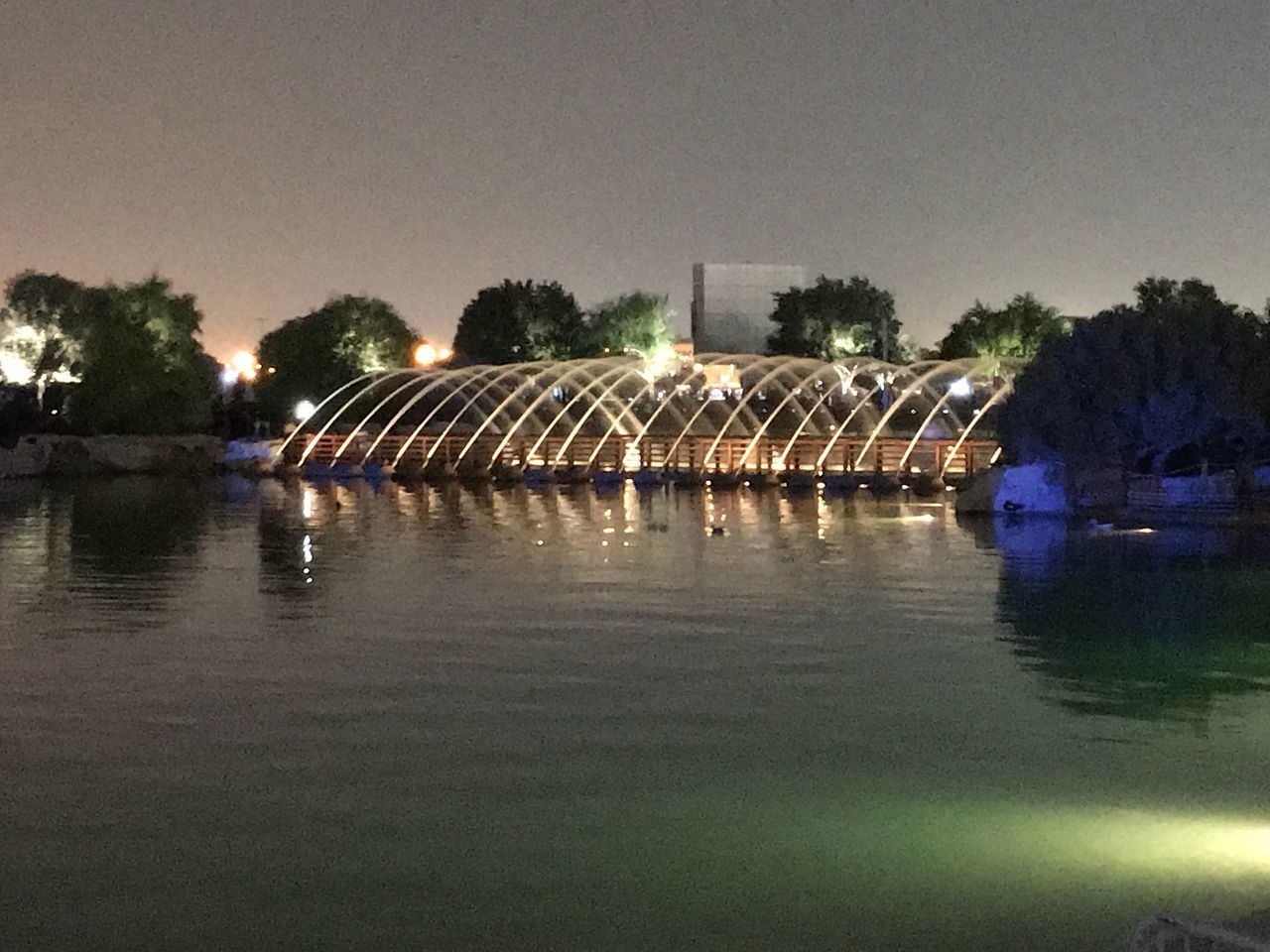 water, tree, night, illuminated, river, waterfront, reflection, architecture, outdoors, large group of people, built structure, clear sky, bridge - man made structure, sky, nature, reflecting pool, building exterior, city, people